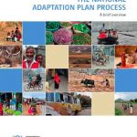 The national adaptation plan process: A brief overview