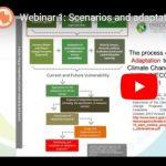 Webinar: Scenarios and adaptation measures for NAPS: The mexican experience