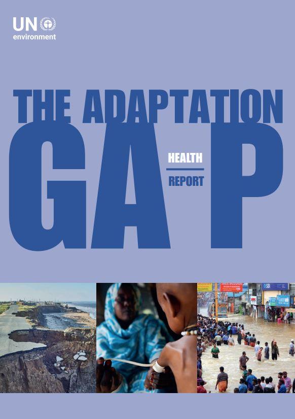 The Adaptation GAP report
