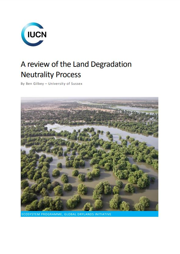 A review of the Land Degradation Neutrality Process