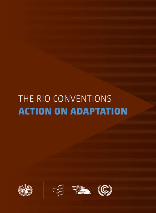 The rio conventions Action on ADAPTATion